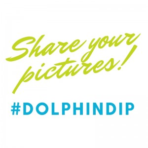 Share your pictures - Dolphin Dip